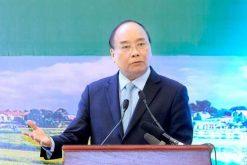 Chung sức đưa nông sản Việt vươn lên vị trí hàng đầu thế giới