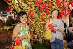 Lễ hội Tết Việt thu hút 60.000 lượt khách tham dự